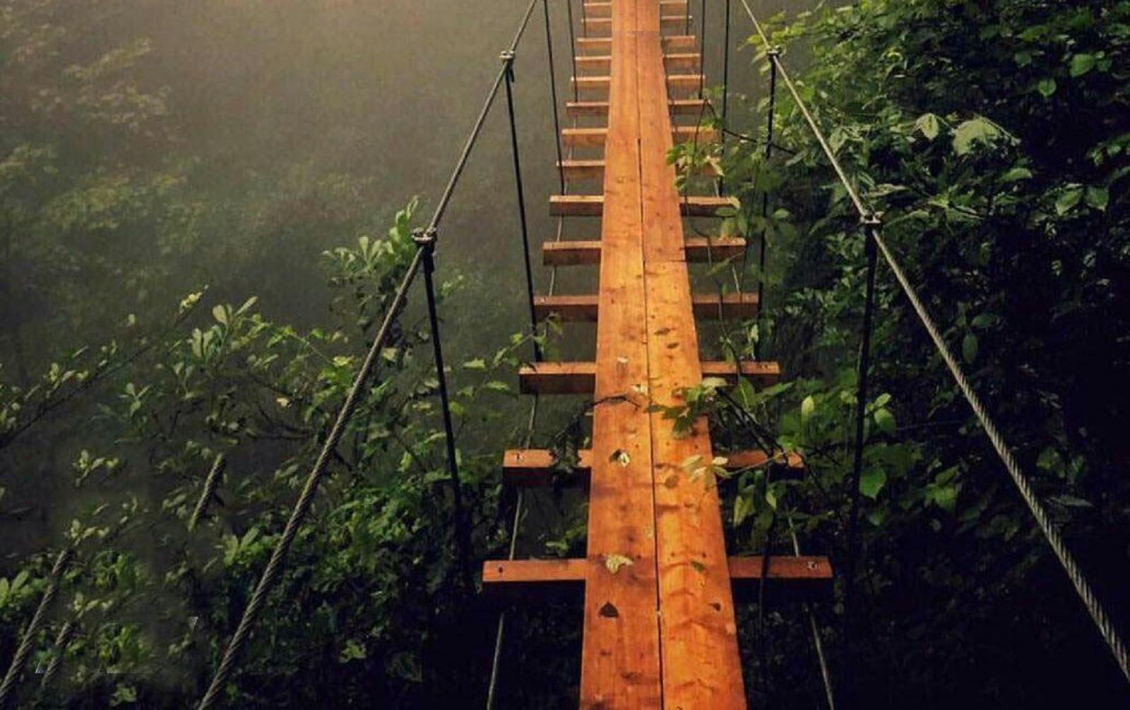 پل چوبی نمک آبرود