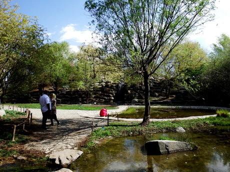 باغ گیاهشناسی نوشهر