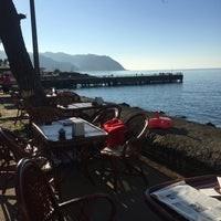 Rengin Cafe (5).jpg