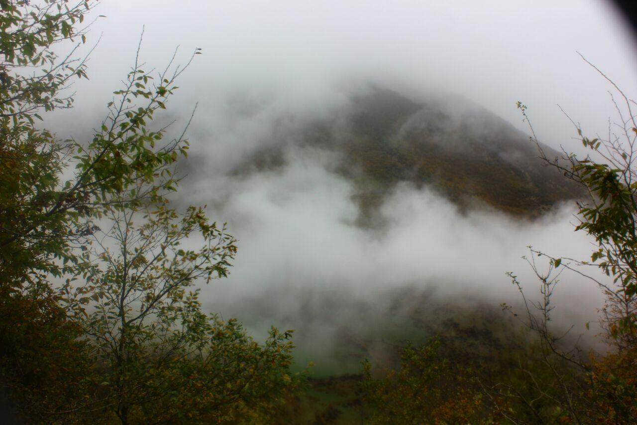 تور جنگل ابر بسطام خرقان