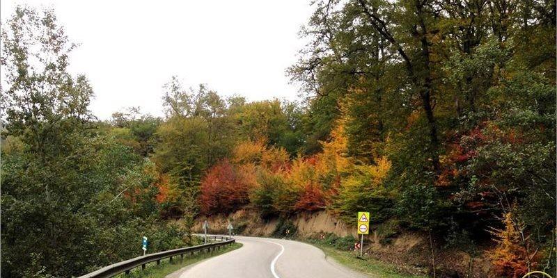 Kiasar Road