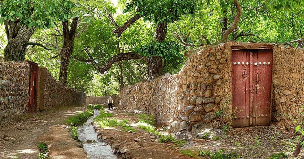 Qasr-e-dasht-gardens (3).jpg