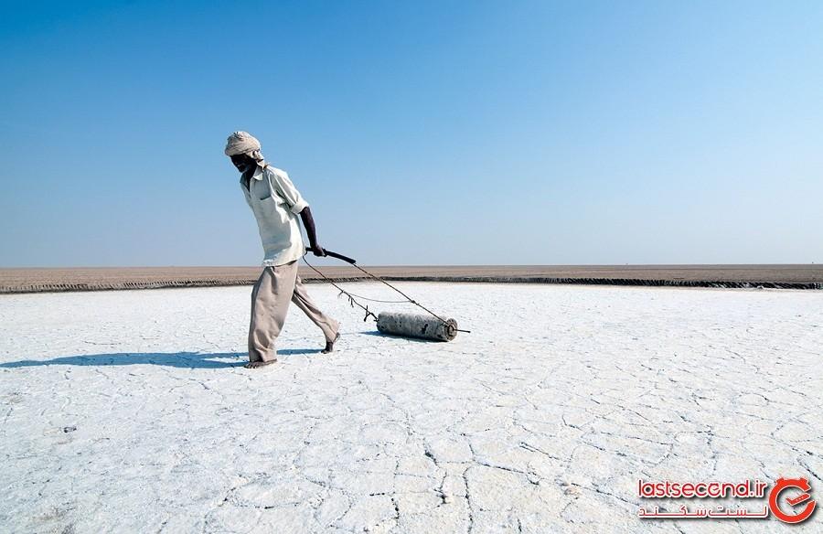 صحرای نمکی و عجیب در هند، نمکهایی به سفیدی برف!