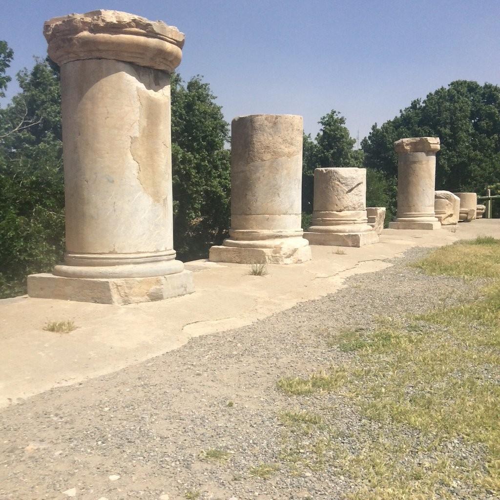 Temple of Anahita (5).jpg