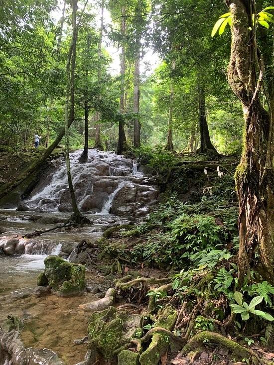 Sa Nang Manora Forest Park (3).jpg