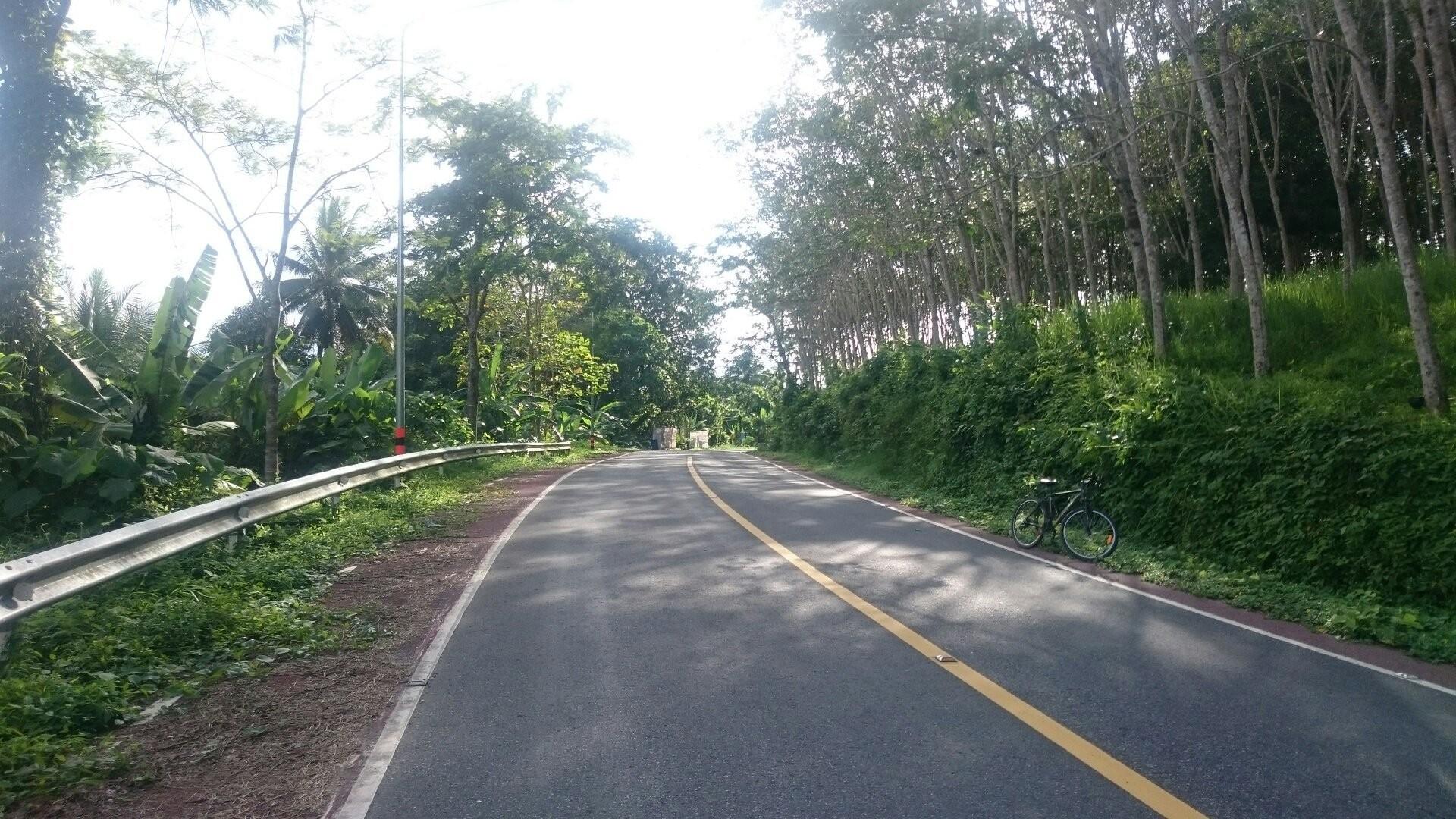 Sa Nang Manora Forest Park (1).jpg