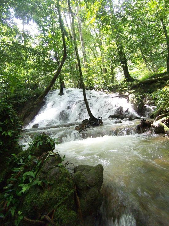 Sa Nang Manora Forest Park (6).jpg
