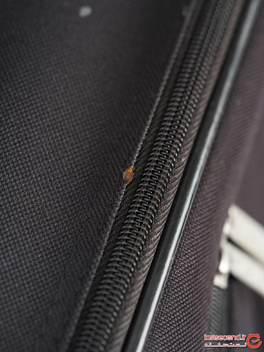 5 اشتباهِ مربوط به کوله و چمدانِ سفر که حداقل یکبار مرتکب شدهایم!