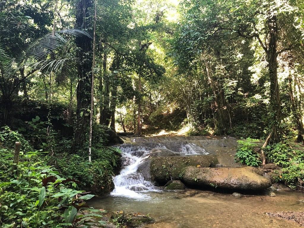 Sa Nang Manora Forest Park (5).jpg