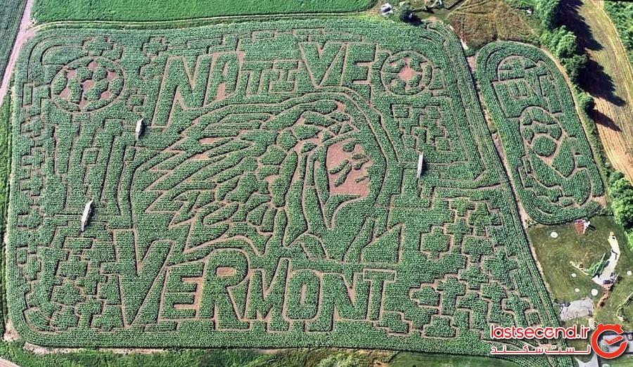 باغ هزارتو ذرت بزرگ ورمونت - دانویل ، ورمونت