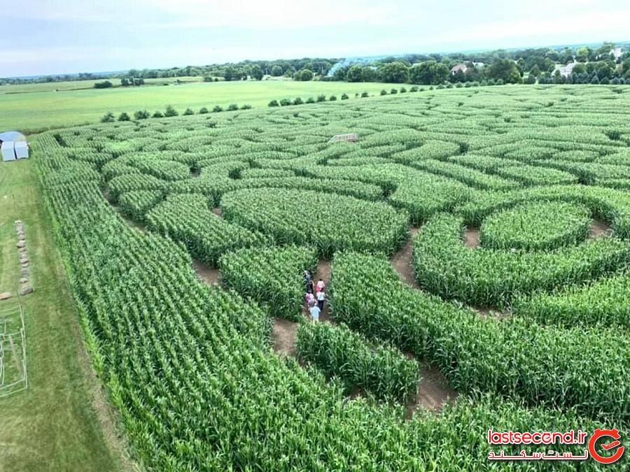 مزرعه ماجراجویی ریچاردسون –روستای اسپرینگ گرو ایلینوی