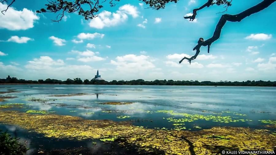 بدون سفر کردن، طعم بودن در سریلانکا را بچشید! (قسمت اول)