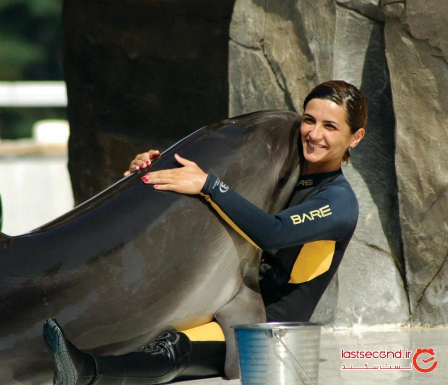 پارک دلفین های باتومی