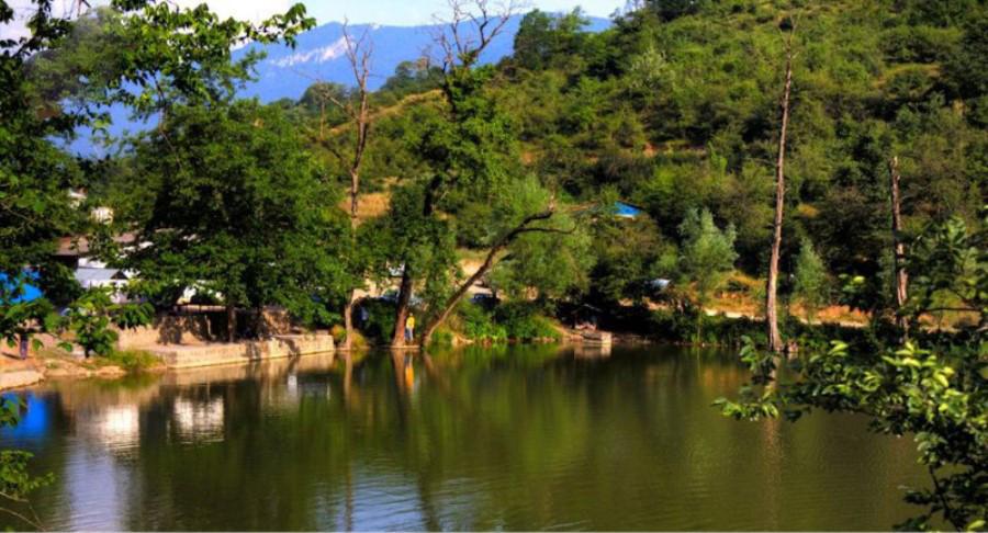 تالاب حمید آباد، سرزمین نیلوفرهای آبی در ساری!