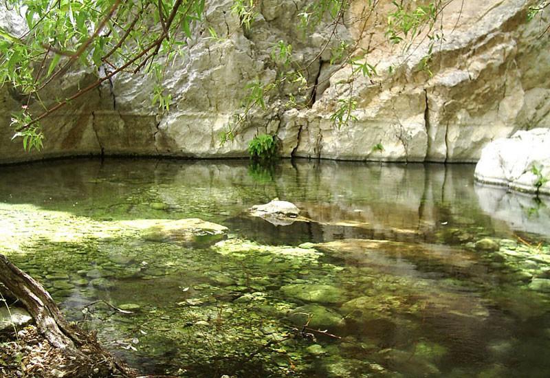 تنگ بنیون، جاذبه بی نظیر استان بوشهر