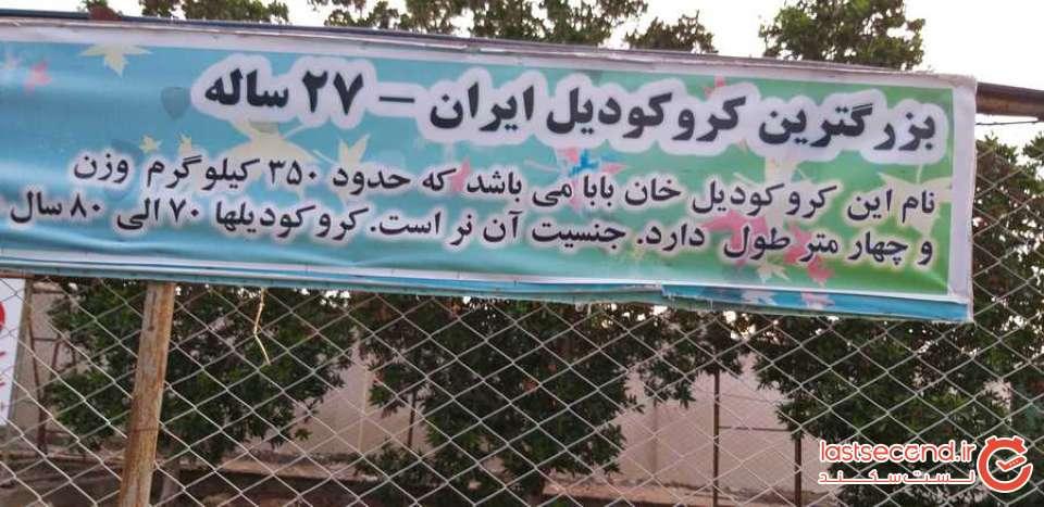 با کاروان حاج علی از مشهد تا قشم
