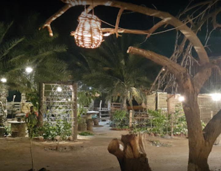 مزرعه و کافه ارگانیک سلیدون (5).png