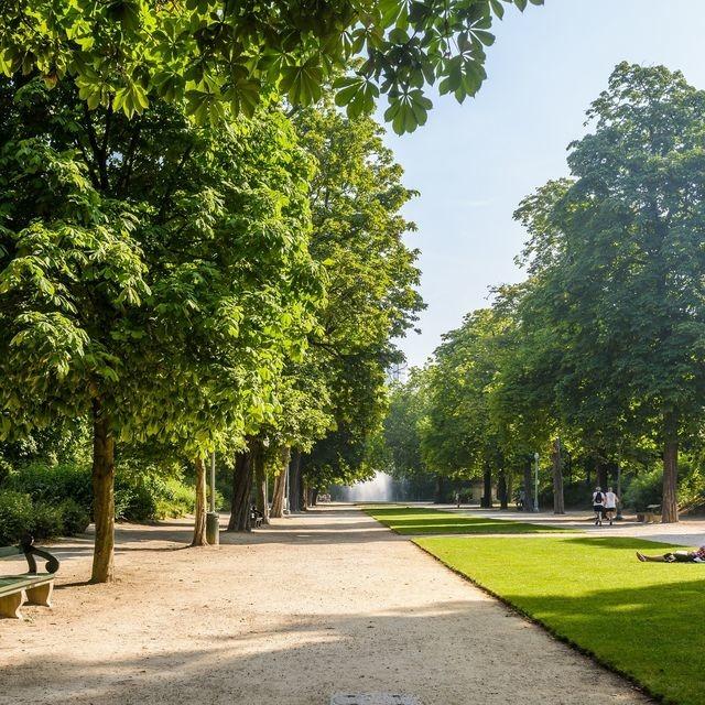 پارک د بروکسلز