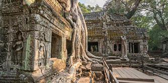رویای سبز ( سفرنامه مالزی و کامبوج ) پاییز 98