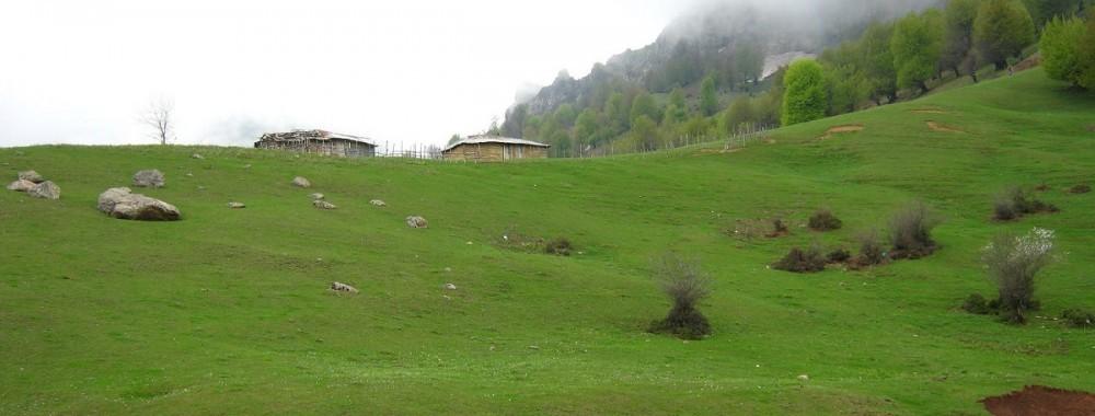 کوه روبار