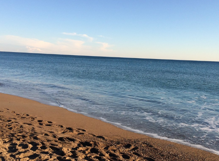 Lara Beach (2).png