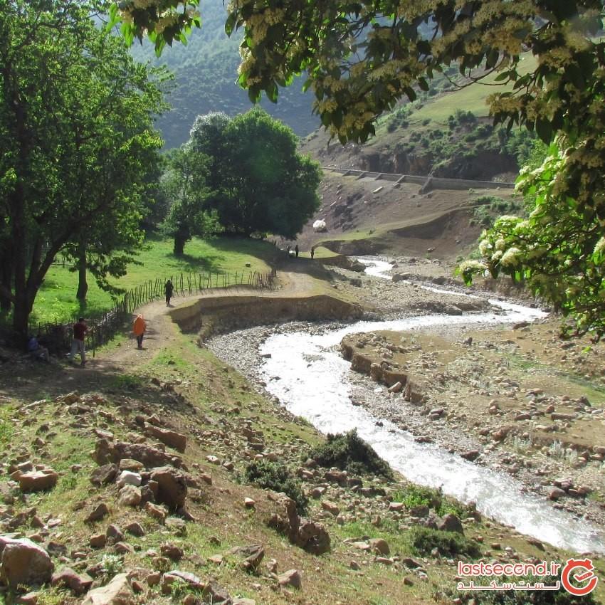 Nav Village (2).jpeg