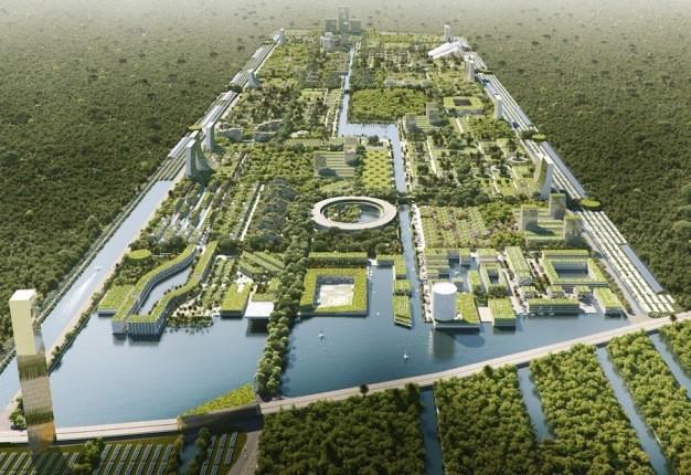 شهر هوشمندی در مکزیک کشتگاه بیش از 7 میلیون گیاه و درخت خواهد بود!