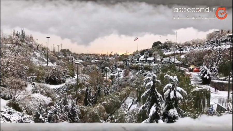 بوی زمستون، رنگ برف