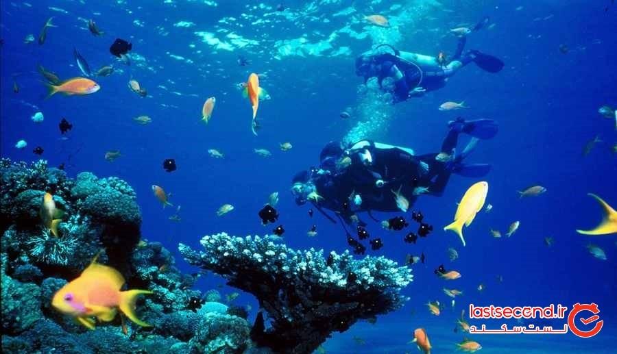 غواصی و تفریحات زیر آبی بالی