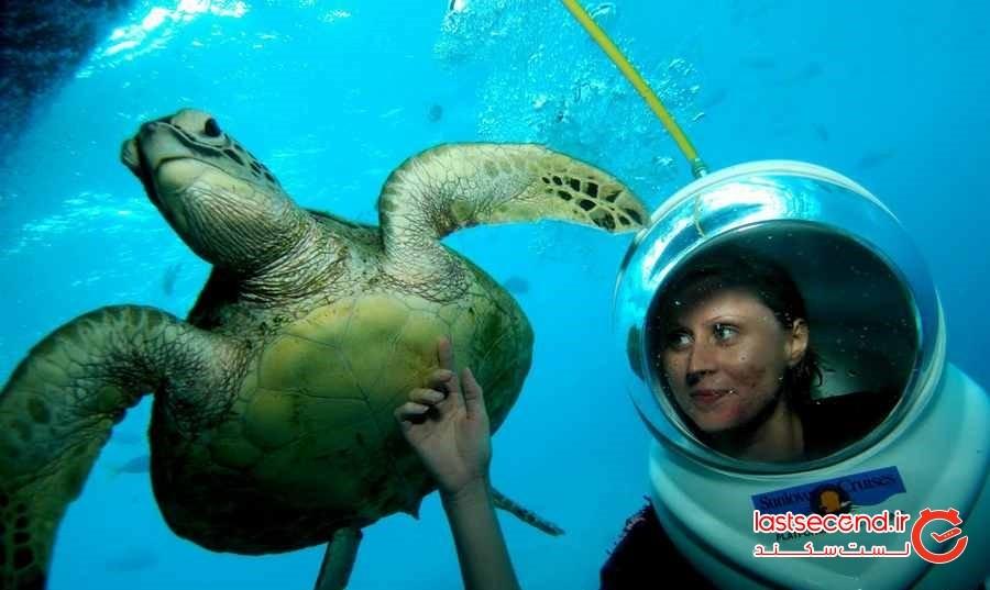 گشت زیر دریا  Bali Seawalker