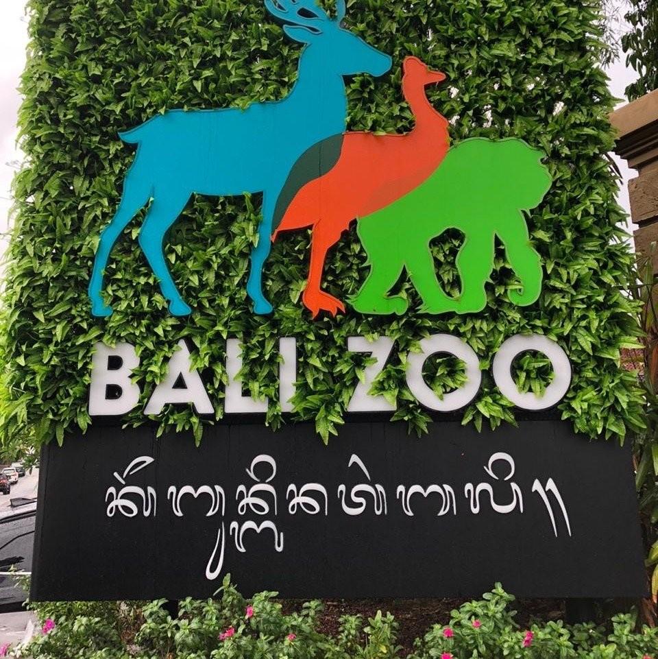 bali-zoo (9).jpg