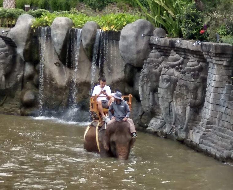 bali-zoo (3).JPG