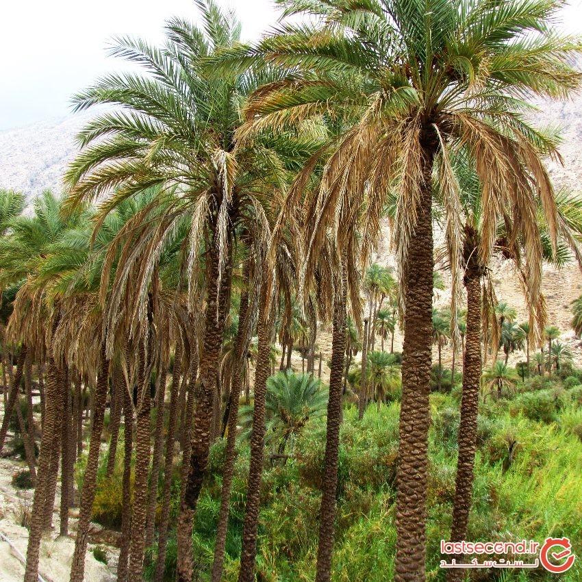 Khaeez Tourist Area
