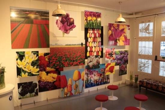 amsterdam-tulip-museum (10).jpg