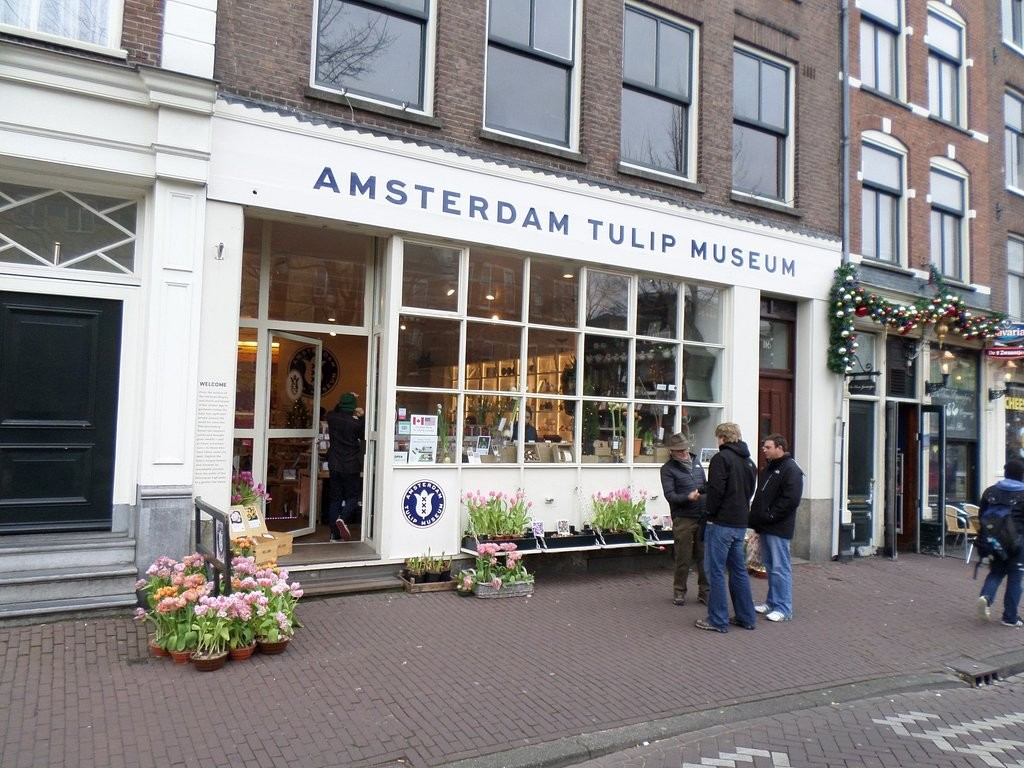 amsterdam-tulip-museum (16).jpg