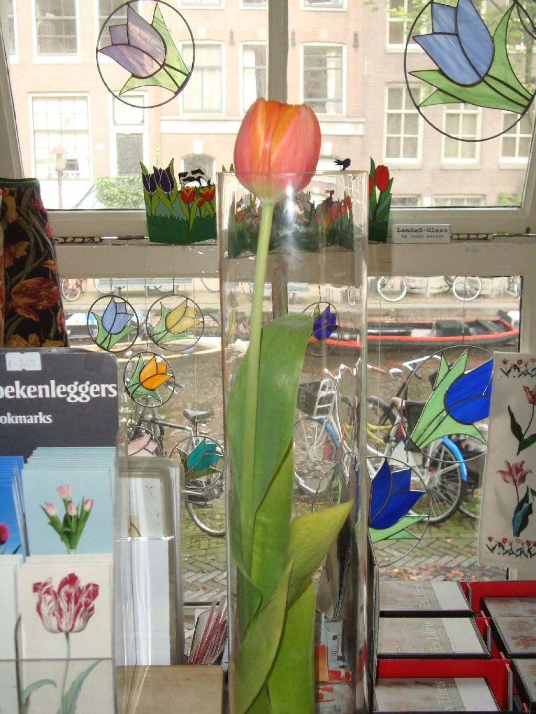 amsterdam-tulip-museum (15).jpg