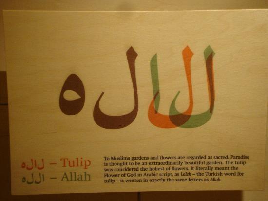 amsterdam-tulip-museum (18).jpg