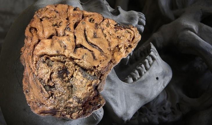 دانشمندان بقایای انسانی 2600 ساله را با مغزی تقریبا سالم کشف کردند!