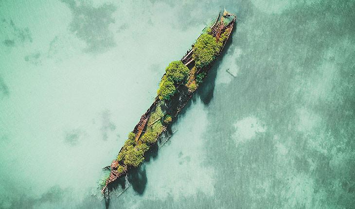 کشتی رها شده 100 ساله در استرالیا توسط طبیعت پذیرفته شد!