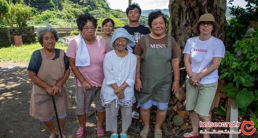 گیاهی سمی که زندگی اهالی جزیزه ژاپنی را در زمان گرسنگی نجات داد!