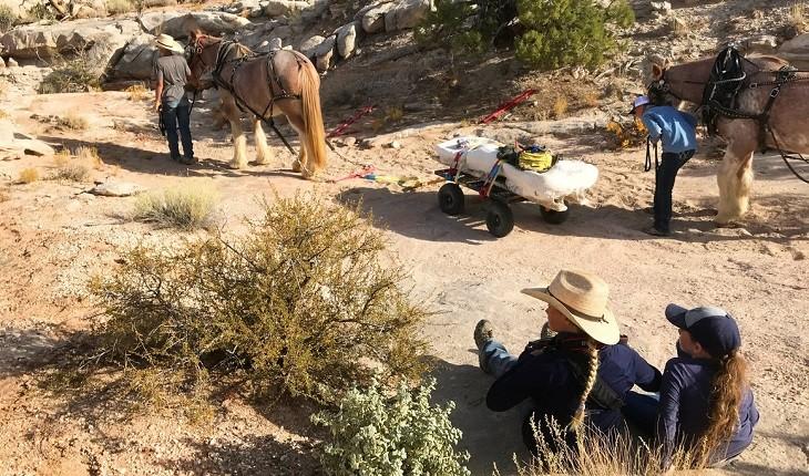 کشف فسیل استخوان های دایناسوری کم یاب در غرب آمریکا!