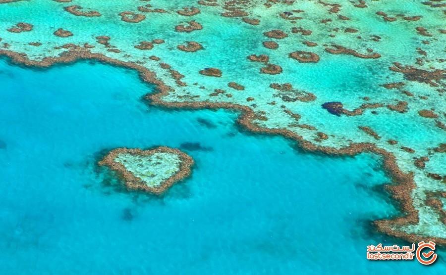 صخره دریایی قلبی شکل، صخره مانع بزرگ، استرالیا