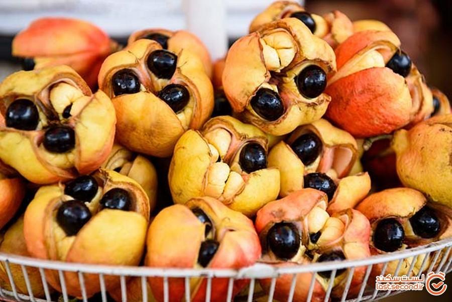 10 تا از خطرناک ترین غذاهایی که انسان ها می توانند بخورند!