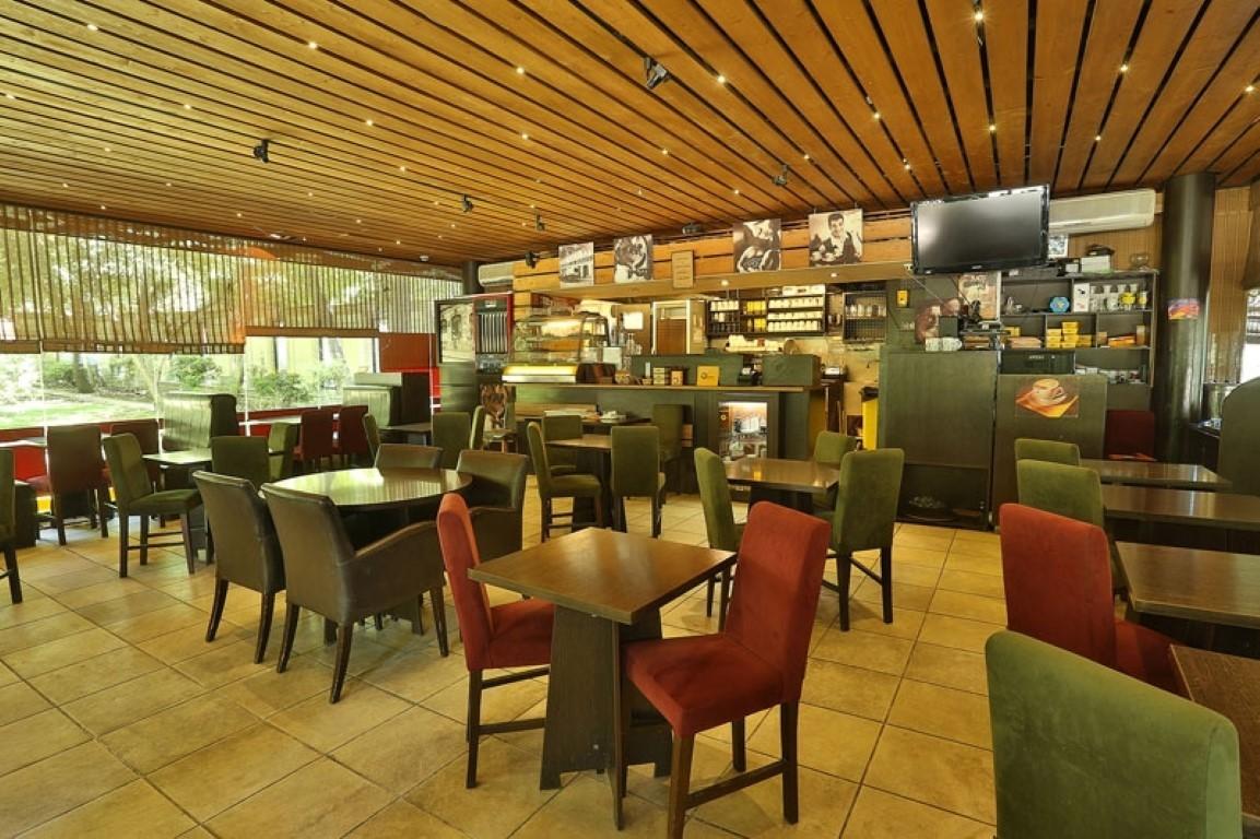 کافه ویونا پلاس(باغ فردوس) (3).jpg