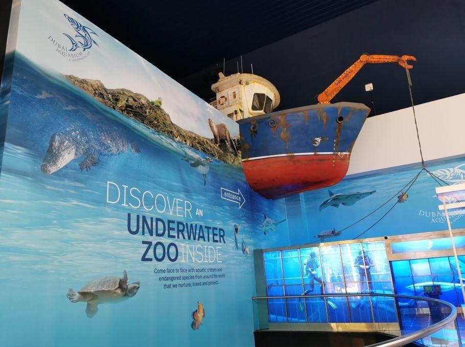 dubai-aquarium-underwater-zoo (5).JPG