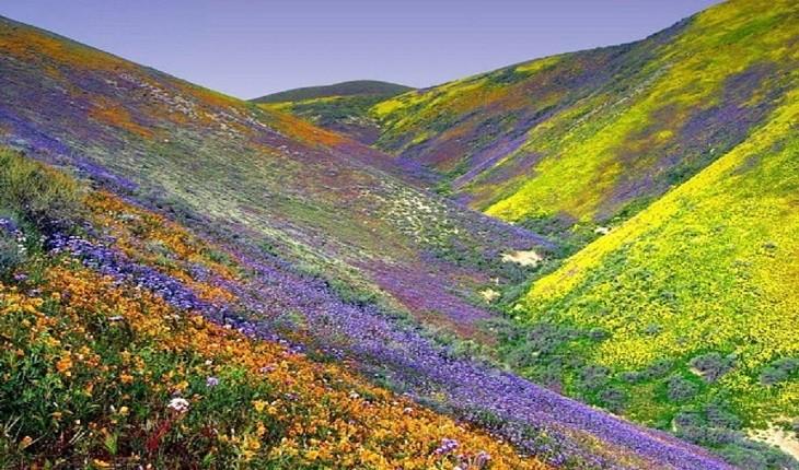 10 مکان خیرهکننده و زیبایی که کمتر شناخته شده اند!