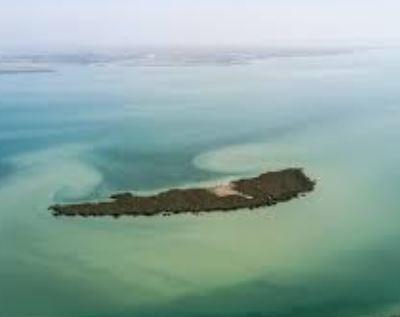 Mardu Island