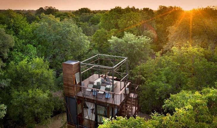 خانه درختی هایی منحصر به فرد که تجربه سافاری را برایتان رقم می زنند