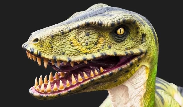 دایناسوری شبیه به پرندگان به عنوان کوچکترین دایناسور کشف شد!
