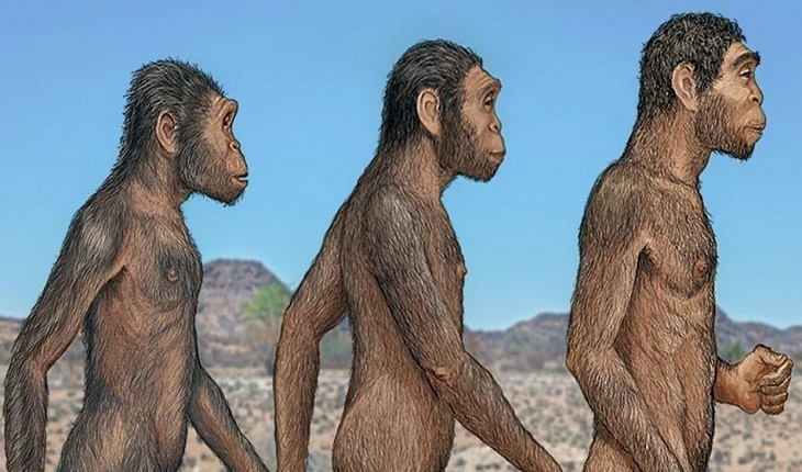 با این کشف، تاریخ زندگی انسان های اولیه دگرگون شد!